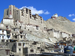 Leh Palace with Gompa in Background