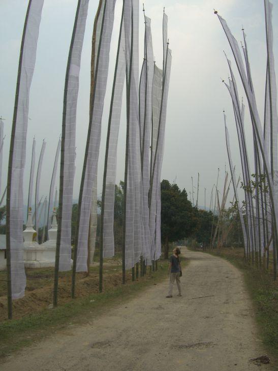 prayer flags and jaime